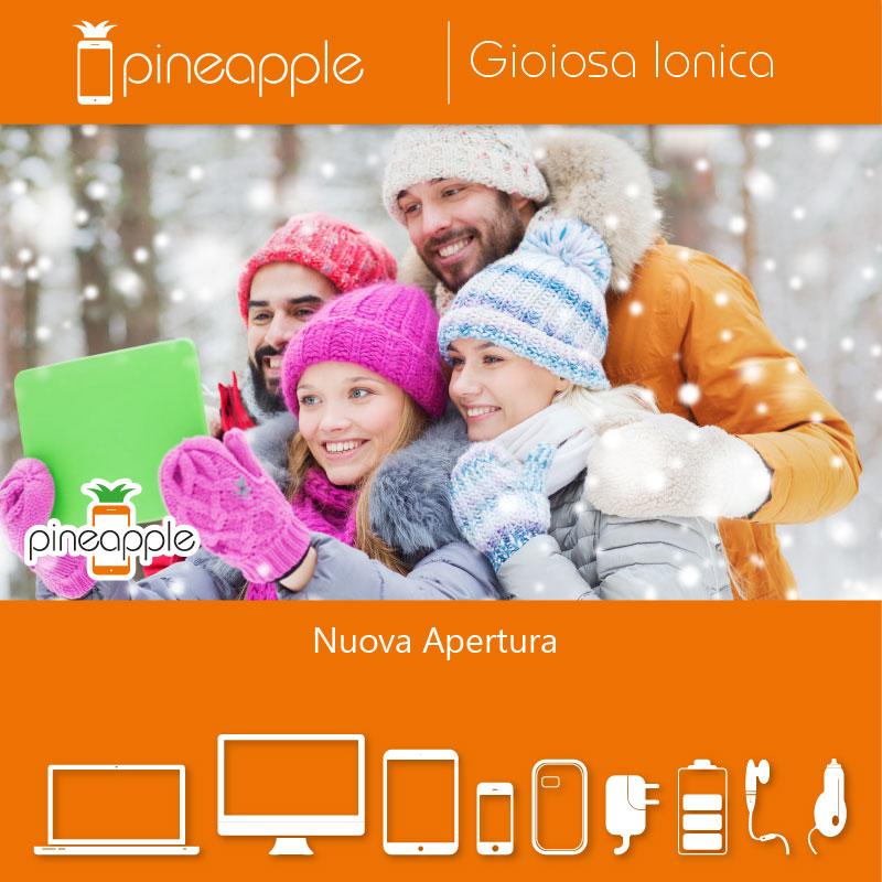 Nuova Apertura Pineapple Gioiosa Ionica